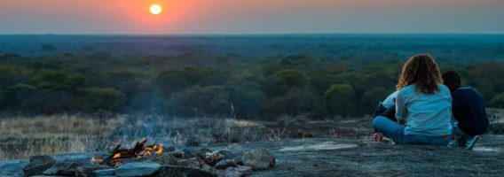zimbabwe safari tours