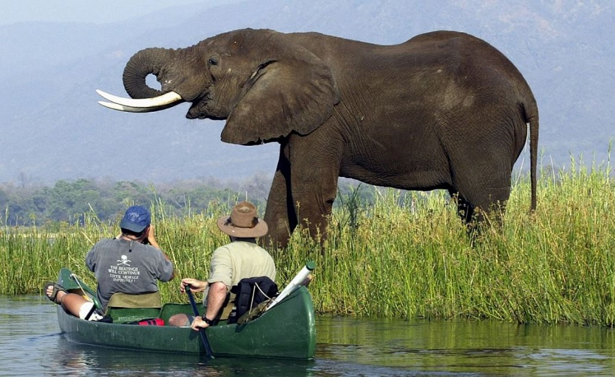 best south african tours