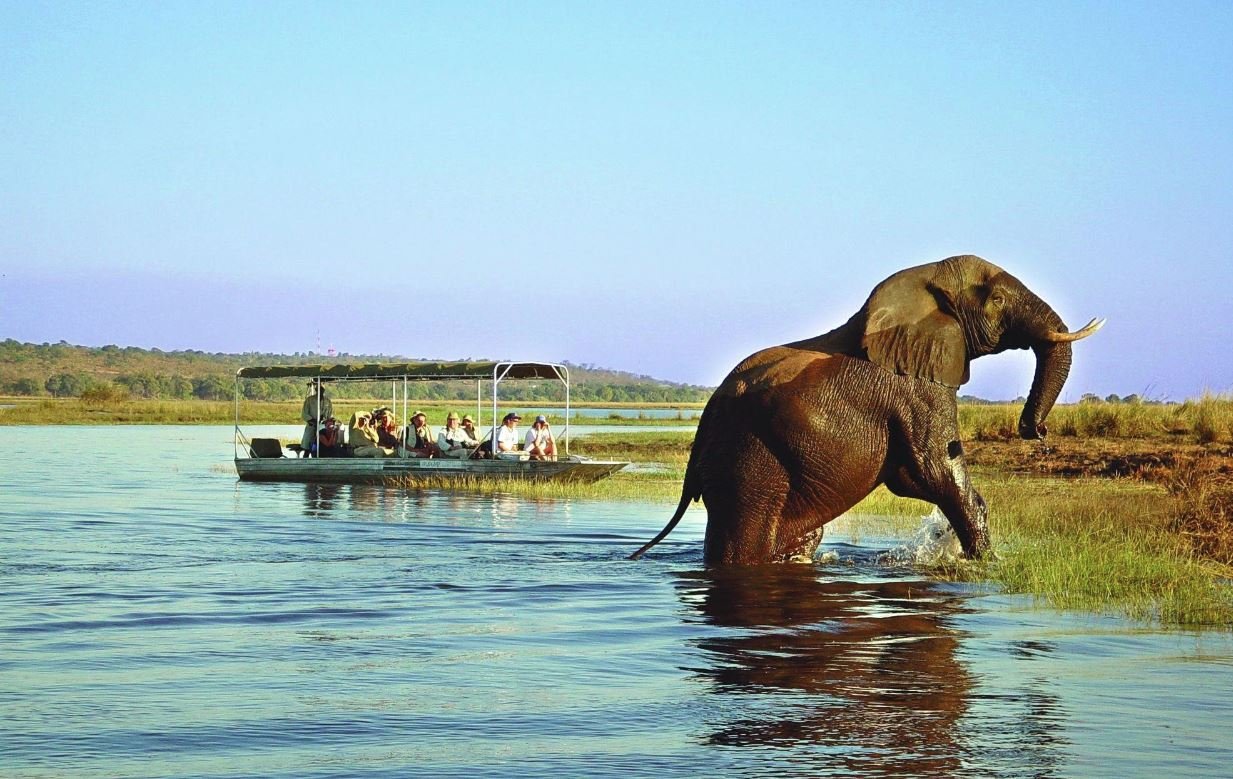 zimbabwe safari holidays