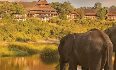 best botswana safari tours