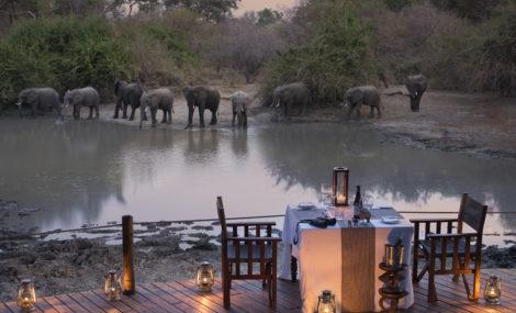 kanga-camp-mana-pools-elephant-zimbabwe