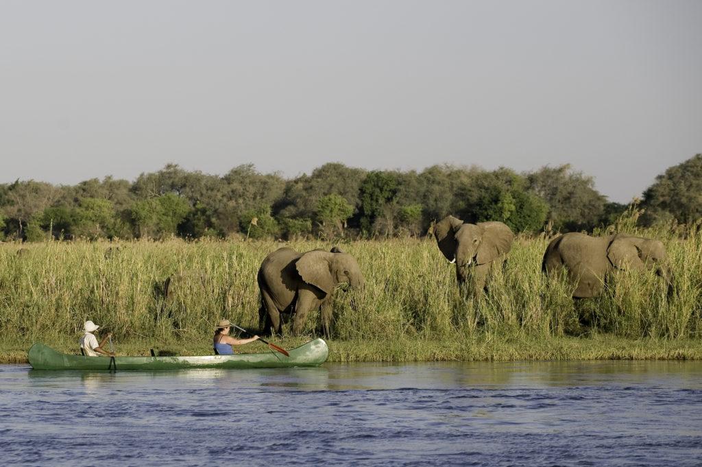 Chikwenya-Camp-Canoe-Safari
