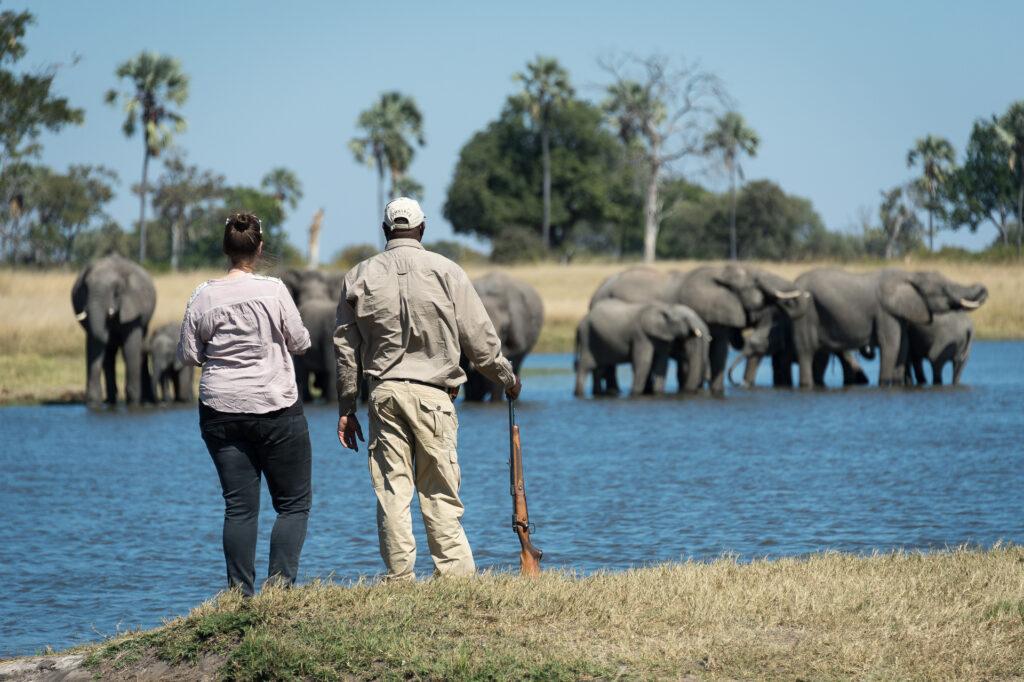 Davisons-Camp-Walking-Safari