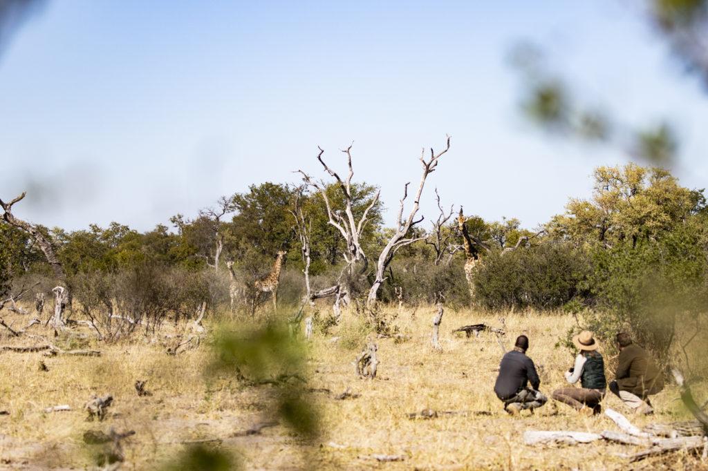 Kings-Pool-Walking-Safari