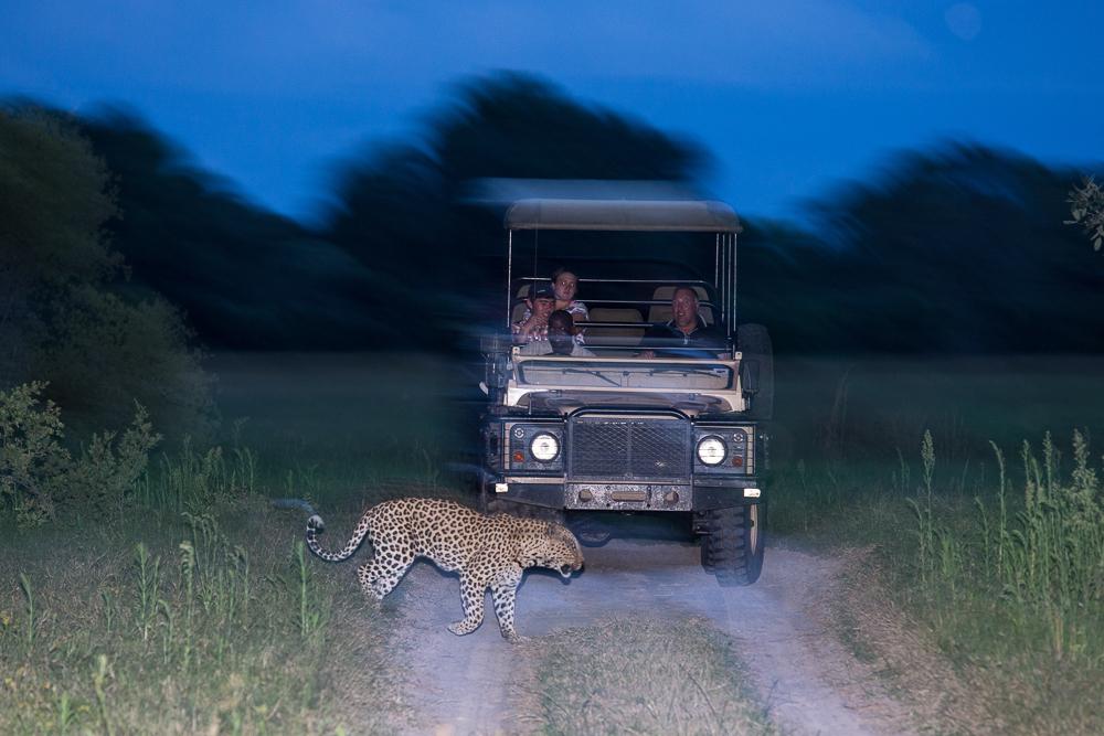 little-vumbura-game-drive-night