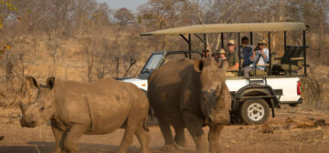 Safari Connoisseur – Hwange, Victoria Falls (Livingstone) & the Kafue